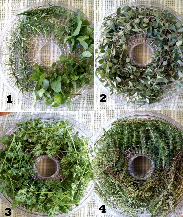 Herb Layers